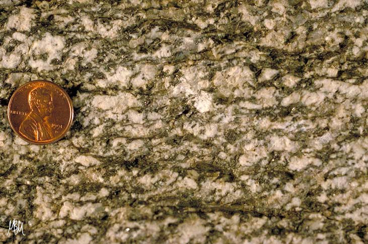 SC fabric in gneiss